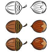 Cartone animato set di immagini vettoriali di nocciola e ghianda. eps10 — Vettoriale Stock