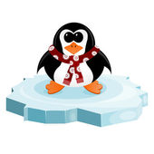 Penguin on an ice floe — Stock Vector