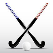 Two sticks for field hockey and ball on a white background — Stock Vector