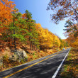 Fall Color Skyline Drive - Stock Photo