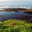 La Jolla Coast California - Stock Photo