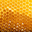 Honeycomb — Stock Photo #13153532