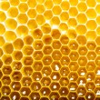 Photo: Honeycomb