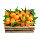 Orange crate — Stock Photo