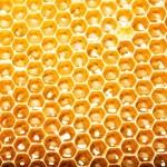 zblízka pohled pracovní včely na med buňky — Stock fotografie #21808437