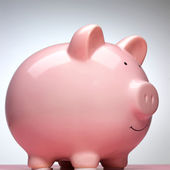 Front view of pink piggy bank isolated on white background — Stock Photo