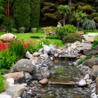 Spring flowers in the Asian garden — Stock Photo