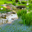 Garden with pond in asian style — Stock Photo #21814395
