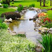 Jarní květiny v asijské zahradě — Stock fotografie