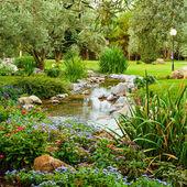 весенние цветы в саду азиатских — Стоковое фото