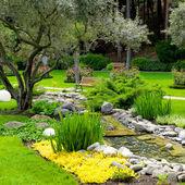Trädgård med damm i asiatisk stil — Stockfoto
