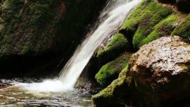 Beautiful waterfall in mountain wood — Stock Video