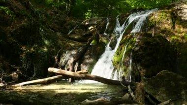 山の木で美しい滝 — ストックビデオ