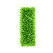 Letter of grass alphabet — Stock Photo