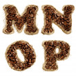 Alphabet from coffee beans on fabric texture isolated on white — Photo