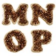 Alphabet from coffee beans on fabric texture isolated on white — Stock Photo