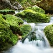 Forest waterfall and rocks covered with moss - Stock Photo