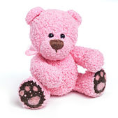 Classic teddy bear — Foto Stock