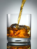 Pouring Scotch Whisky in Glass with perfect ice — Stock Photo