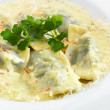 Delicious hot healthy vegetarian ravioli — Stock Photo #49744749