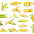 Stock Photo: Ear of Corn isolated on white background