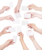 Set of hand holding business card — Stock Photo