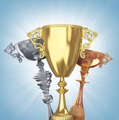 Winner  trophies — Stock Photo