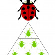 Ladybird diet pyramid — Stock Vector