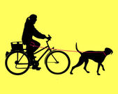 Woman on bicycle with dog on leash — Stok Vektör