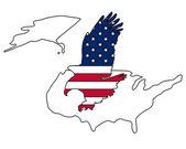American bold eagle — Stock Vector