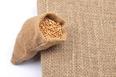 Cereal bag on white — Stock Photo