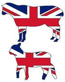 英国のヒツジ — ストックベクタ