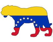 Jaguar Venezuela — Stock Vector