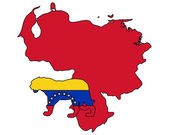 Jaguar venezuela — Stockvector