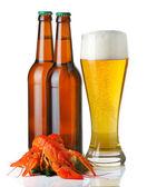 Bouteilles et coupe du tas léger de bière et de homards isolé — Photo
