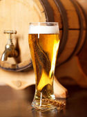Still life with a draft beer — Stock Photo