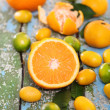 Fresh citrus fruits on the wooden table — Stock Photo #16970903