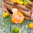 Fresh citrus fruits — Stock Photo #16970907