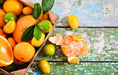 Fresh citrus fruits in the wooden box — Stock Photo