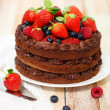 Chocolate cake with icing and fresh berry — Stock Photo #18091877