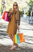 Mladá žena s nákupní tašky — Stock fotografie