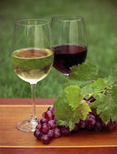 One glass of white wine and red wine — Stock Photo