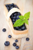 Delicious fresh blueberry in the basket — Stock Photo