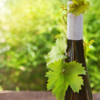 Bottle of wine on the wooden table outdoors — Stock Photo