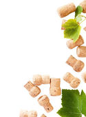 Dated wine bottle corks on the white background — Stock Photo
