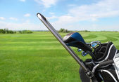 Golfclubs in golfbag — Stockfoto
