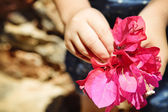 Child with bunch of bougainvillea — Stock Photo