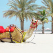 Camel resting on the beach — Stock Photo #26388573