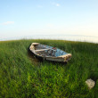 Old wooden fishing boat on the green grass — Stock Photo #30022401