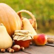 Stock Photo: Pumpkins, jam, nuts and basket with apples